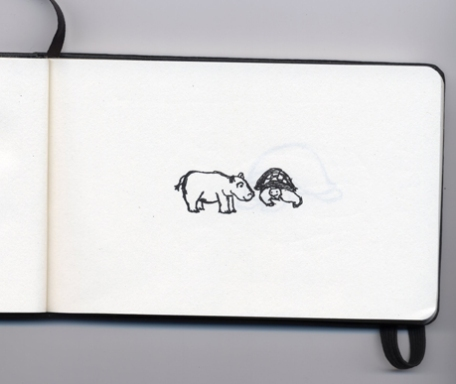 hippo_turtle_sketch